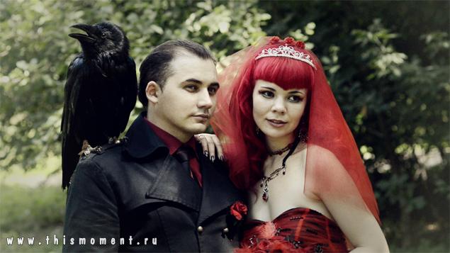 Ворон и молодожены